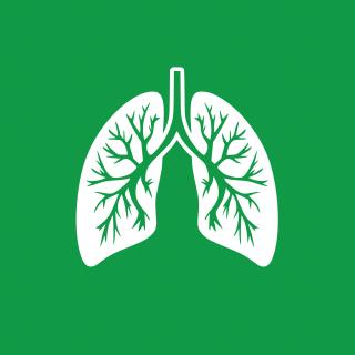 Šetrné k alergikům a astmatikům